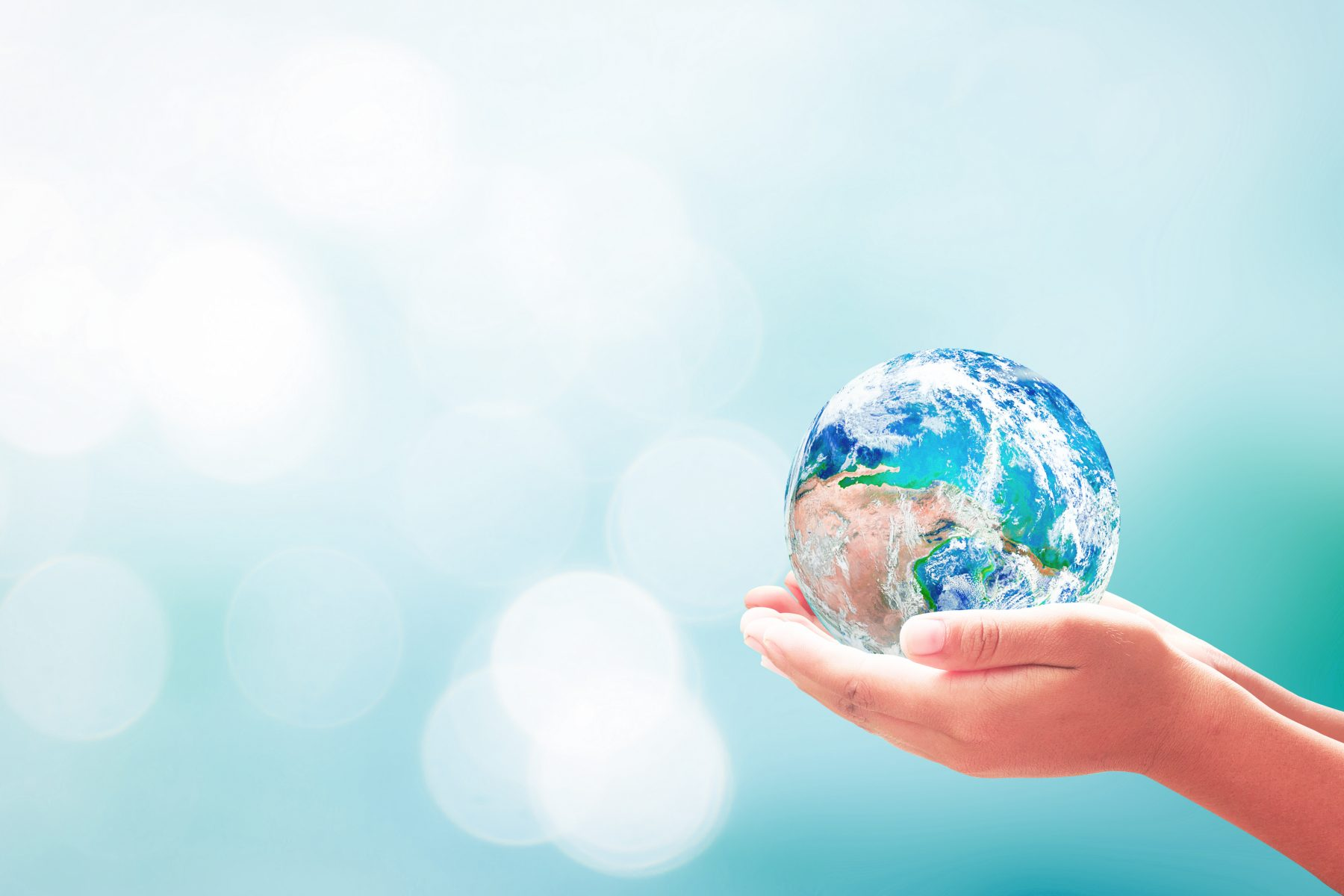 cherish the world and others. Create a peaceful world